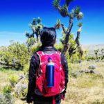 Grayl Water Purifier on Hiking Trip