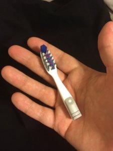Travel Toothbrush Hack is breaking