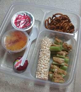 packed food for travel