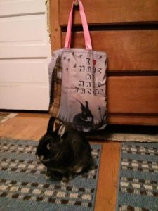 another funny tote bag