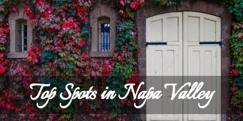 Enjoy Picture-Perfect Views at These Top 4 Spots in Napa Valley